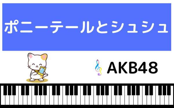 AKB48のポニーテールとシュシュ